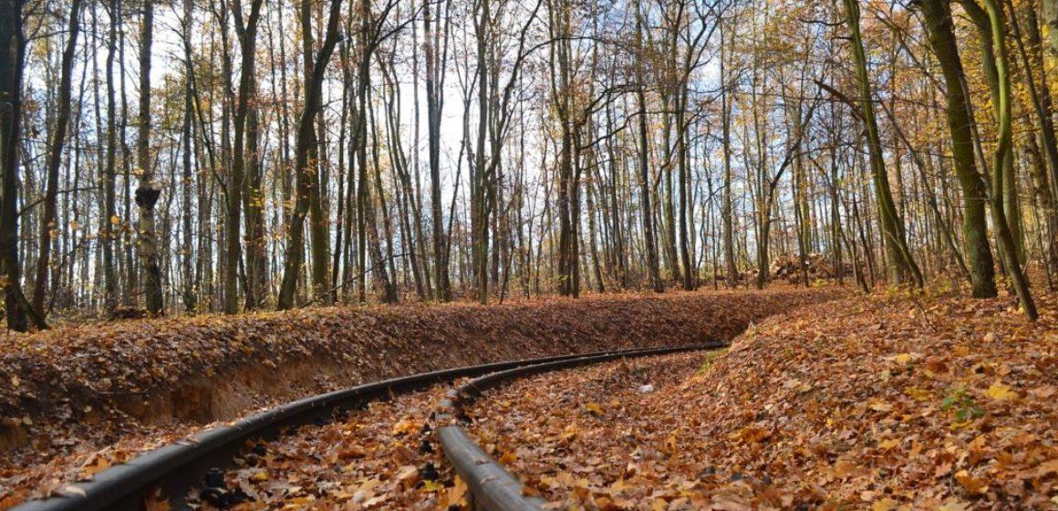 spoor herfst