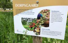 Dorpsgaard
